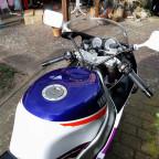 Ziegenfuss Yamaha