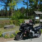 Altherren- und Sozia-Bike